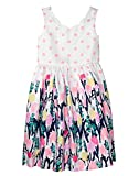 Gymboree Girls' Little Floral Dress, Petal Pink dot, 14