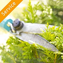 Shrub or Hedge Trimming