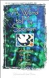 Child Sponsor Organizations