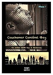 Cauchemar Carcéral Gay : Phase 1: Un Roman BDSM Gay à Falbourg