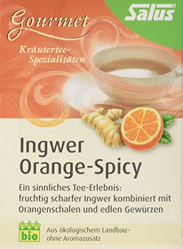 Salus Orange-Spicy Ingwer Gewürz-Kräutertee, 3er Pack (3 x 30 g) - Bio