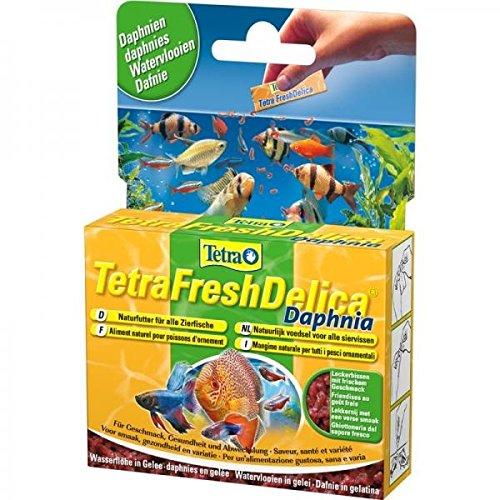 Tetra Delica Fresh Daphnien 48 g-1PACK