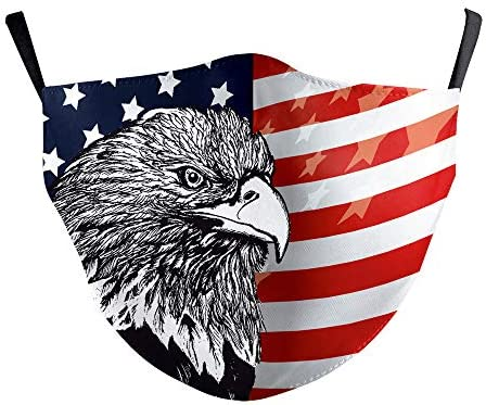 American Flag Condor Face Mask Bandanas Balaclava Washable Breathable Mouth Mask with 2 Filters product image