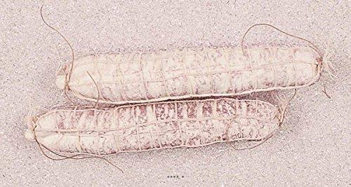 Artif-déco-mag.com - Saucisson artisanal en filet blanc X 2 Plastique soufflé L 250x50 mm