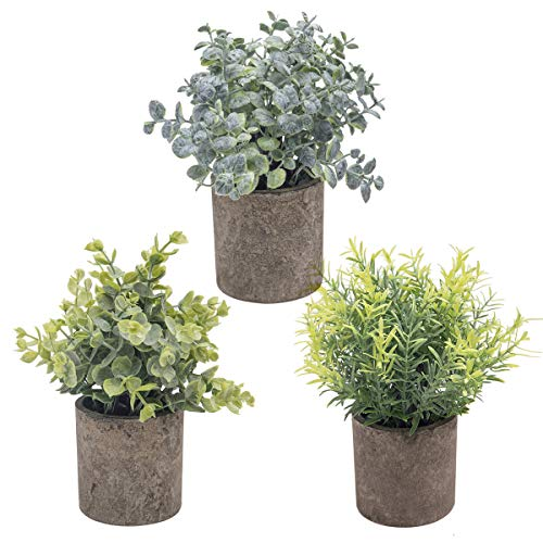 THE BLOOM TIMES Set of 3 Small Potted Artificial Plants Plastic Fake Greenery Faux Plants in Pots for Rustic Home Office Desk Farmhouse Bathroom Kitchen Indoor Decor