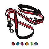 Kurgo 1505 6-in-1 Quantum Reflective Hands Free Dog Leash with Adjustable Waist Belt