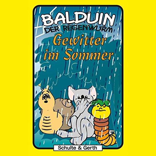 Gewitter im Sommer Titelbild
