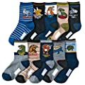 Kids Boys Cartoon Dinosaurs Pattern Sport Socks 10 Pairs (8-12 years, Dinosaurs 2)
