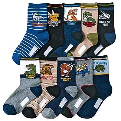 Kids Boys Cartoon Dinosaurs Pattern Sport Socks 10 Pairs (8-12 years, Dinosaurs 2)