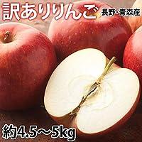 りんご 訳あり 約5kg(4.5〜5kg)リンゴ 長野・青森県産 サンふじ つがる ジョナゴールド ふじ 林檎