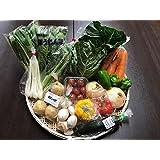 野菜セット クール便送料無料 千葉・茨城県 農家さん直送野菜 新鮮採れたて 12品目以上