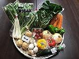 野菜セット 茨城県・千葉県産 農家さん直送野菜 10品目以上 夏季クール便対応