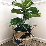 7WUNDERBAR Seagrass Basket Maceta Cesta de Flores de Paja Cesta de lavandería Cesta de Almacenamiento Plegable Grande con asa para la habitación de los niños Baño (D)