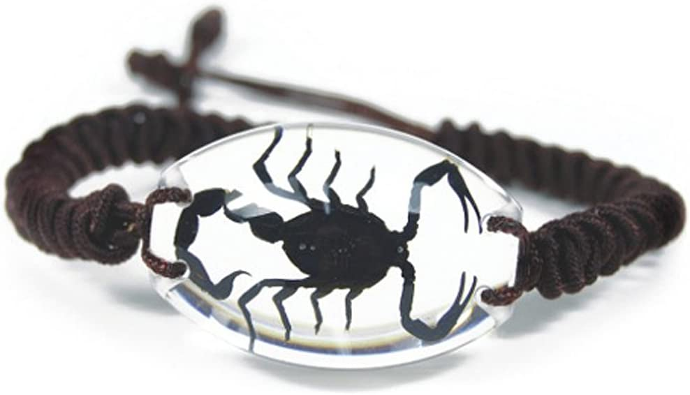 Clear Lucite We OFFer at cheap prices Oval Twisted 4 years warranty Band Bracelet Genuine Black w Scorpio