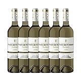 Pazo De Nubori Vino Albariño D.O. Rias Baixas - 6 Botellas de 750 ml - Total:4500 ml
