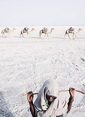 aoyudf Puzzles Rompecabezas Adultos Niños Wooden 1000 Piezas Cada Pieza Es Unica Tecnología Jigsaw Rompecabezas Juego Decoraciones hogar Camello caminando-50x75CM