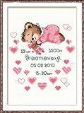 Riolis Kit de Punto de Cruz Certificado de Nacimiento (Niña)