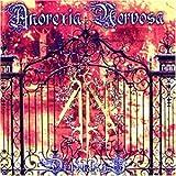 Songtexte von Anorexia Nervosa - Drudenhaus
