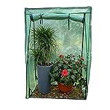 Invernaderos Plastico huerto terraza pequeño para Interiores - Mini casa Verde de plástico de Invierno para Patio con jardín, 100 × 48 × 150 CM