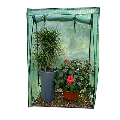 Serres de Jardin Tunnel Petite pour l'intérieur - Mini en Plastique d'hiver pour terrasse de Jardin, 100 × 48 × 150CM Tomate