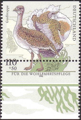 Goldhahn BRD Nr. 2016 postfrisch Totalverz ung Briefürken für Sammler