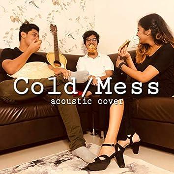 Cold/Mess (feat. Divy & Shravni)