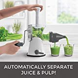 7 BEST Electric Juicer for Wheatgrass
