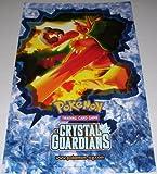 Pokemon Trading Card Game TCG EX Crystal Guardians Blaziken Poster