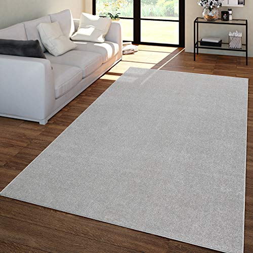 TT Home Wohnzimmer Teppich Unifarben Kurzflor Trendig Und Soft, Schlicht In Silber, Größe:240x340 cm