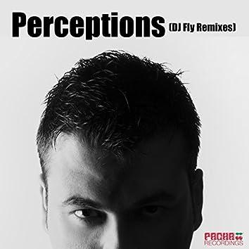 Perceptions (DJ Fly Remixes)