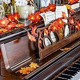 Herbstgirlande,HENMI Herbst Blättergirlande, Ahornblatt Lichterketten, Herbst Saison 20-Lichtern, perfekte Dekoration für Erntedankfest Deko& Weihnachtsbeleuchtung - 2
