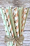 Charmed Peach, mint green and gold paper straws set of 100 straws