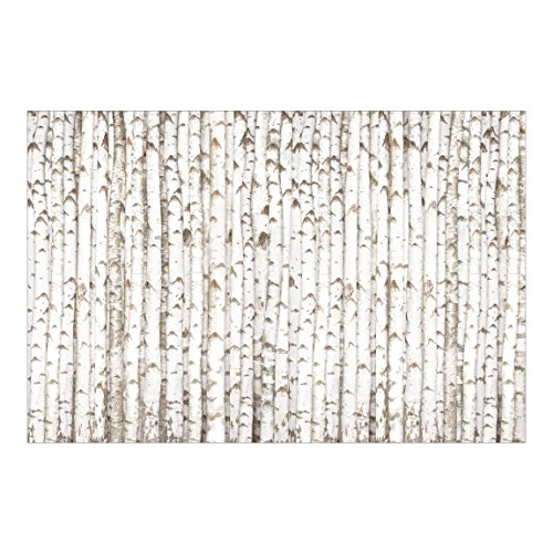 Vliestapete Top Wald Tapeten, HxB: 320cm x 480cm, Motiv: Birkenwand