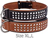 CollarDirect Studded Dog Collar Leather Pet Collars for Dogs Small Medium Large Puppy Soft Padded Brown Black (Black, Neck fit 20' - 22')