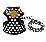 Smalllee Lucky Harnais Doux en Nylon pour Animal Domestique de Taille Petite ou Moyenne, Noir, Taille S