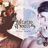 Songtexte von Saltatio Mortis - Das zweite Gesicht