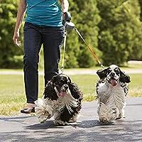 格納式犬ダブルリード - 簡単なワンボタンブレーキ&ロック - 犬1匹あたり2犬50ポンド - 特別な快適さのためのハンドル - 安全な夜のウォーキング (ピンク)