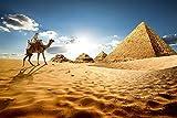 Ägypten Kamel Wüste Pyramide XXL Wandbild Kunstdruck Foto