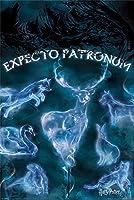 Harry Potter Poster Patronus 288 / ハリー ポッター ポスター パトローナム 288