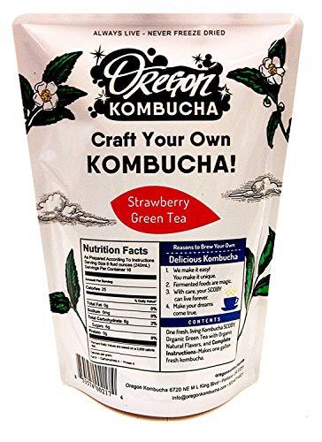 oregon kombucha starter kit - 4
