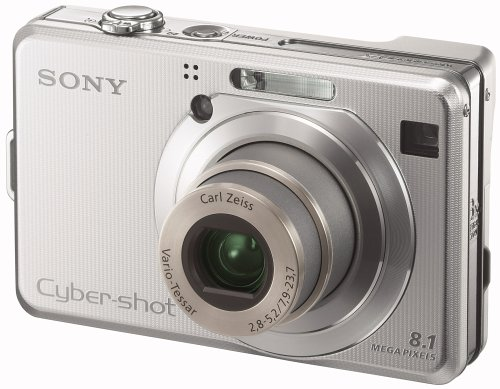 Sony Cyber-Shot DSC-W100 Digitalkamera (8 Megapixel) Silber