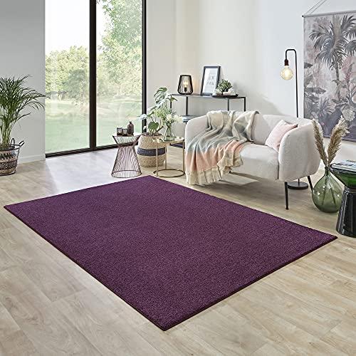 Carpet Studio Ohio Alfombra Salón 160x230cm, Alfombras para Sala, Comedór & Dormitorio, Fácil de Limpiar, Superficie Suave, Pelo Corto - Berenjena/Violeta