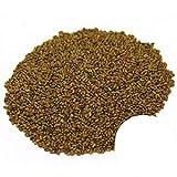 Alfalfa Sprouting Seeds...image