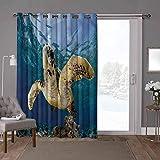 YUAZHOQI cortinas aisladas para puerta corrediza, tortuga, tortuga, tortuga marina, 100 x 284 pulgadas de ancho persianas verticales para puerta de honda (1 panel)