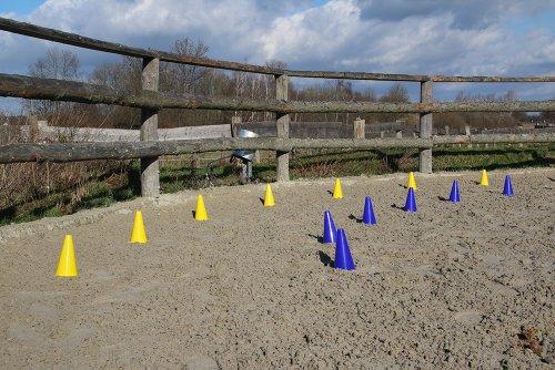 Das HAEST Reitsport Set – 10 Blaue und 10 Gelbe bruchfeste Hütchen mit Tragetasche - 3