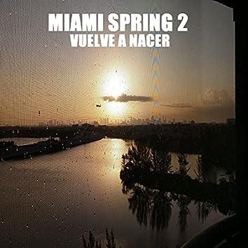 Miami Spring 2: Vuelve a Nacer