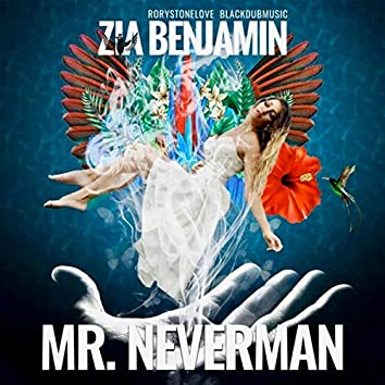 Mr. Neverman