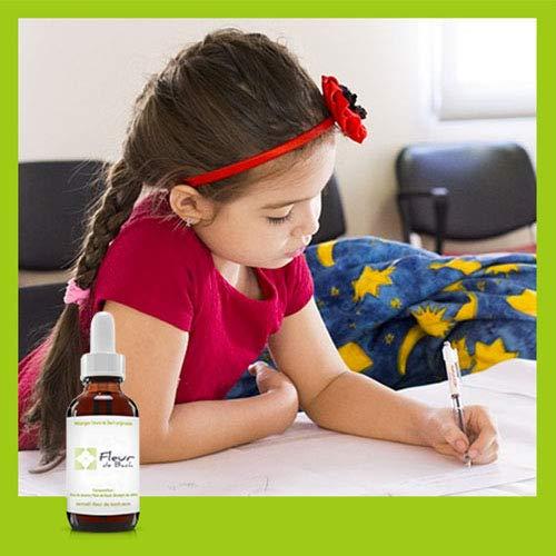 Flores de Bach Phobies escolares sin alcohol, ayuda a tus hijos durante este período de tiempo – Limita las crisis de angustias, lloro o depresión.