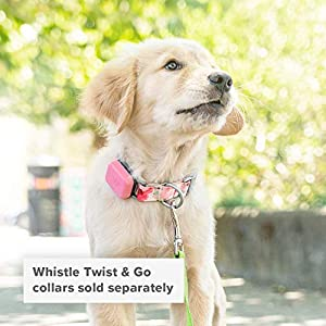 Whistle Go - Health & Location Tracker for Pets - Waterproof GPS Pet Tracker, 10 Day Battery, Pet Fitness Tracker fits on Collar or Harness - Taupe