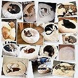 Zoom IMG-1 docatgo cuccia per ciambella gatti